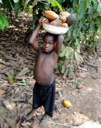 the issue of child trafficking and the use of child slavery on cocoa plantations Forced child labor and cocoa production in west africa issue of child labor on west african cocoa plantations introduction to the issue of child labor in.